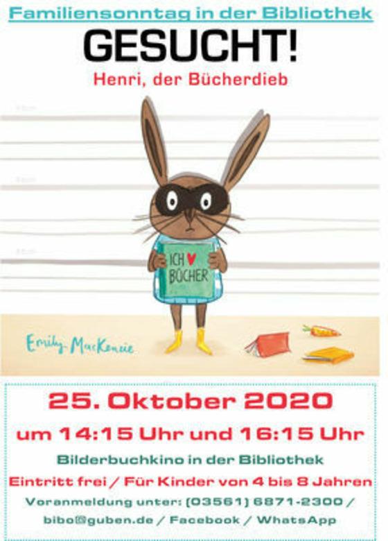 Bücherdieb Henry, Foto: Stadtbibliothek Guben