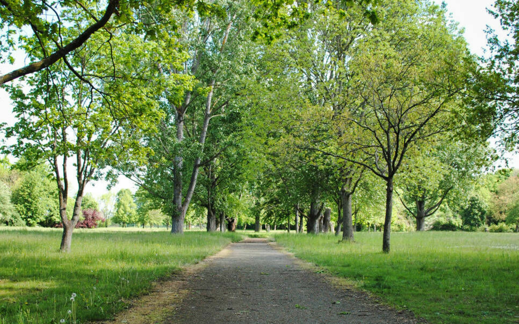 Gubener Stadtpark, Foto: MuT ― Marketing und Tourismus Guben e.V.