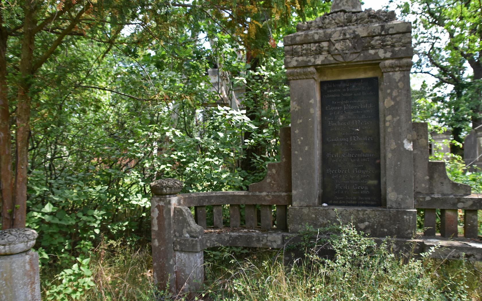 Jüdischer Friedhof, Foto: Marketing und Tourismus Guben e.V., Foto: Marketing und Tourismus Guben e.V., Lizenz: Marketing und Tourismus Guben e.V.